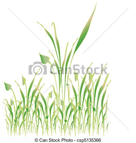 Clip Art Vector of Green grass, object white isolated.