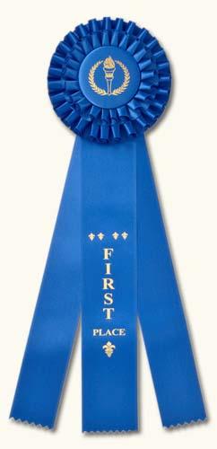 """Champion Rosette Award Ribbons: Premium 14"""" Double Rosette."""