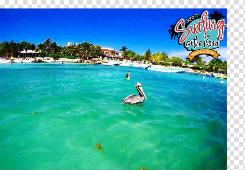 Akumal Beach Hotel Caribbean Travel, hotel transparent.
