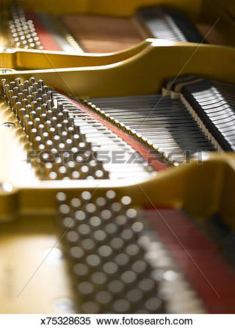 Stock Image of Strings and Hammers inside Grand Piano x75328635.