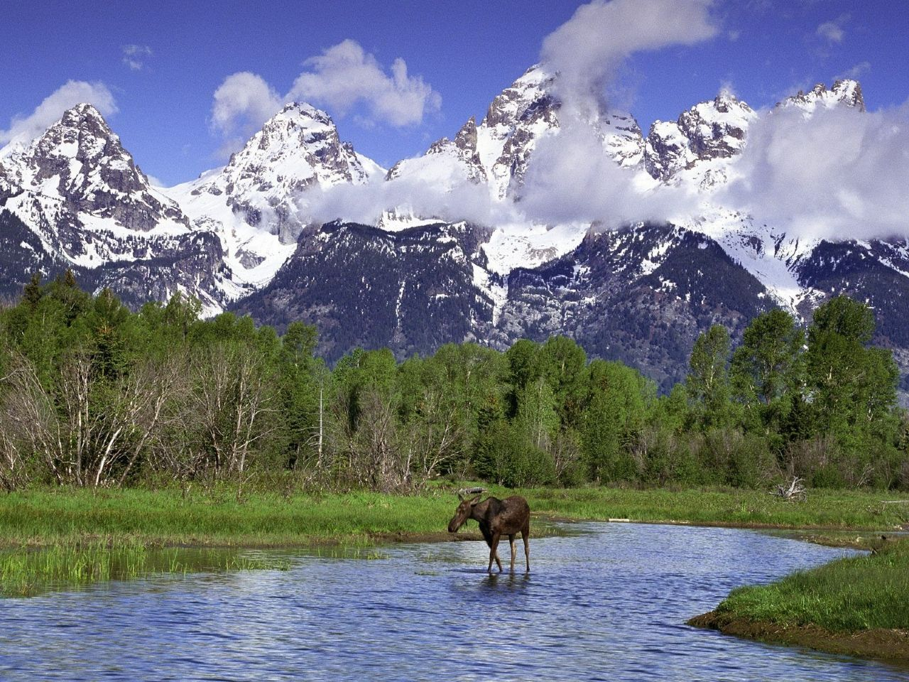 Eva Brosnan: Grand Teton National Park High Quality Wallpaper #644021.