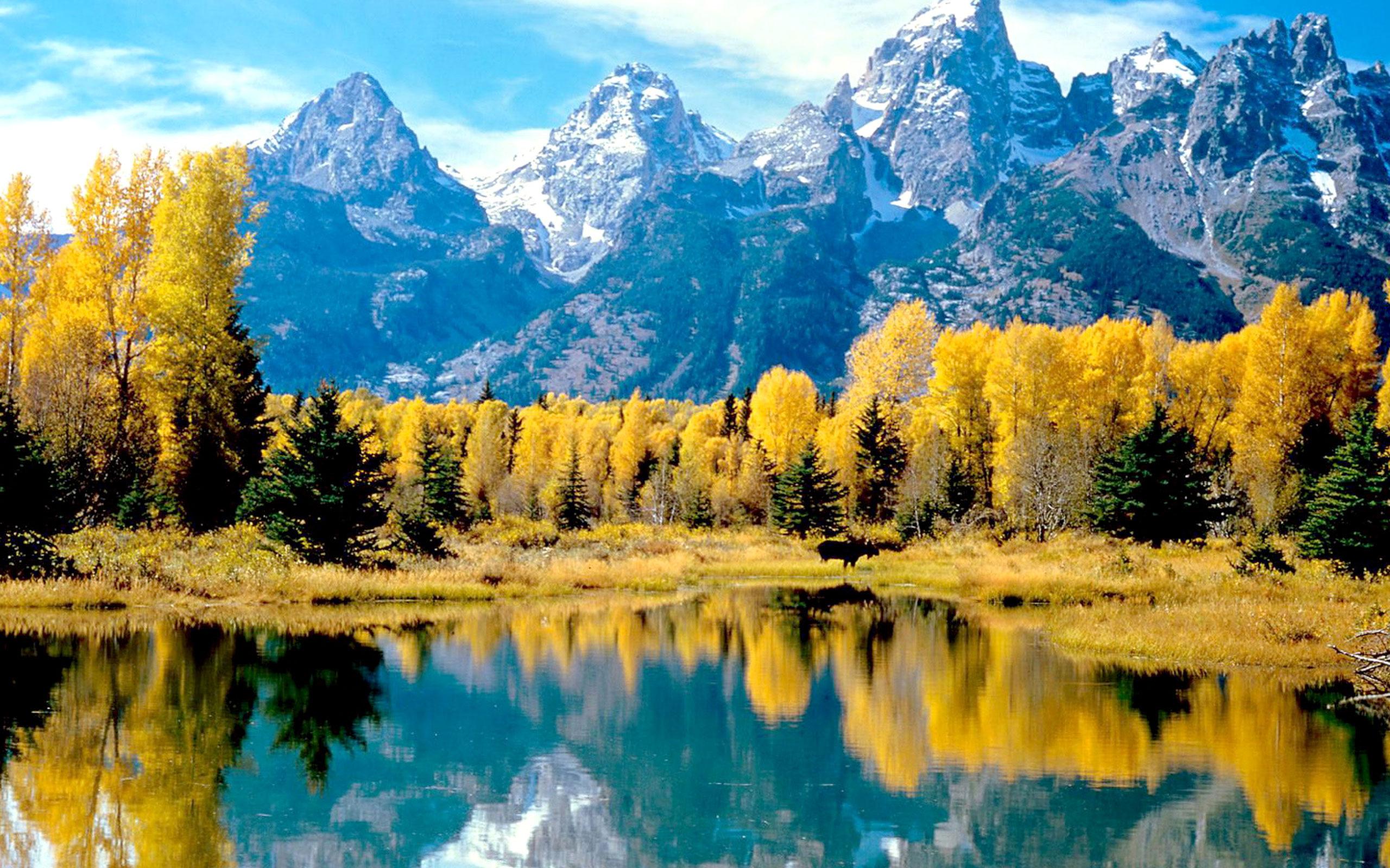 2560x1600px 1141.89 KB Grand Teton National Park #386950.