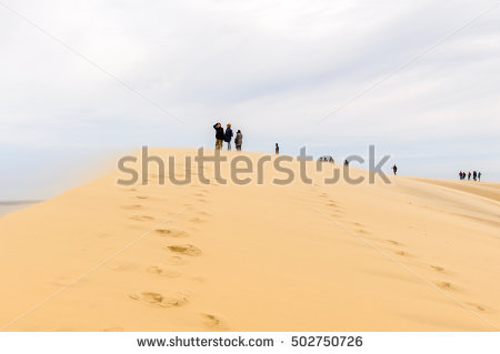 Desert Landscape Gobi Desert Footprint Sand Stock Photo 100701997.