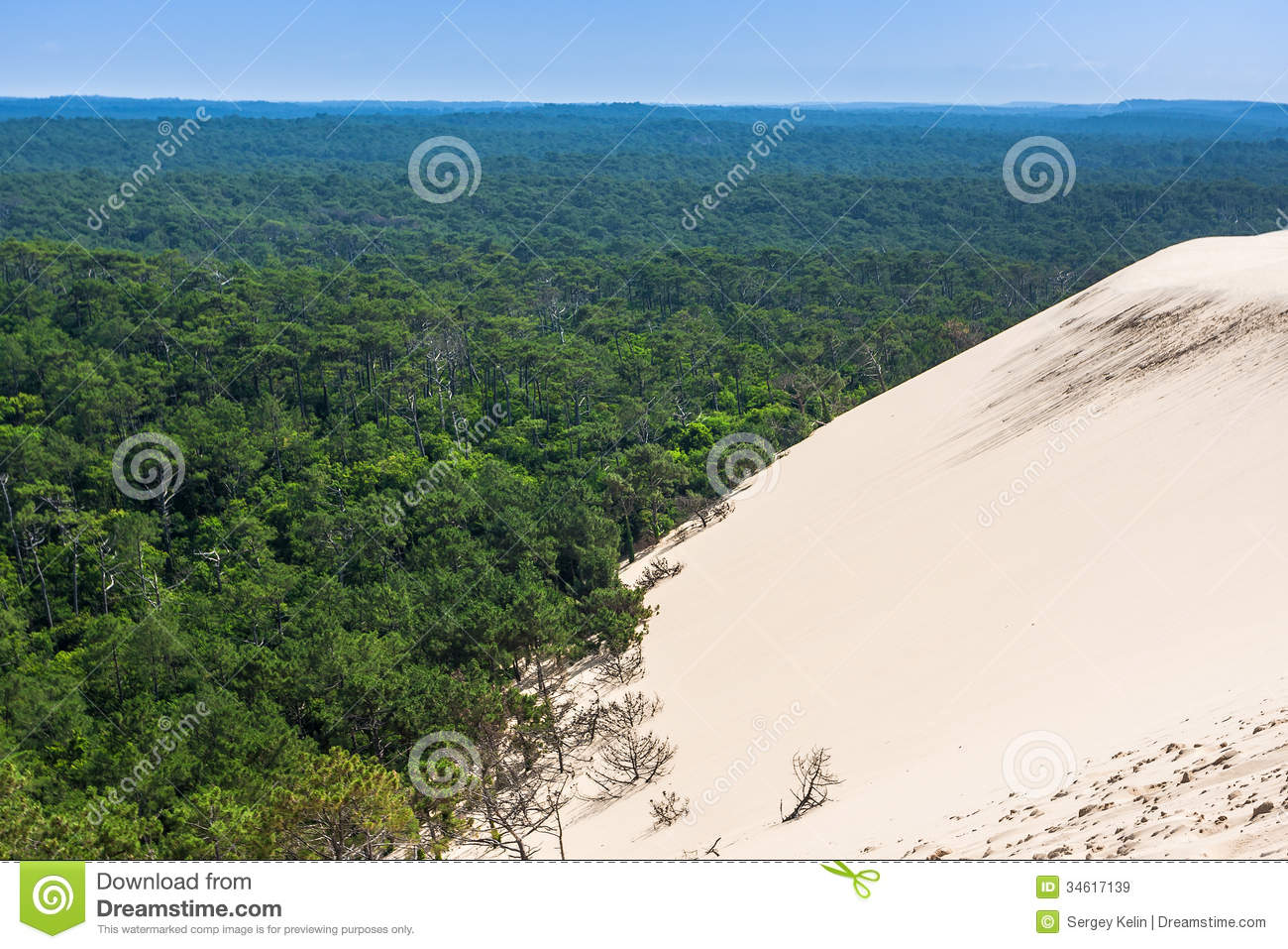 View From Dune Of Pilat.