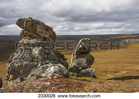 Pictures of Rock formation known as a granite tor on the tundra.