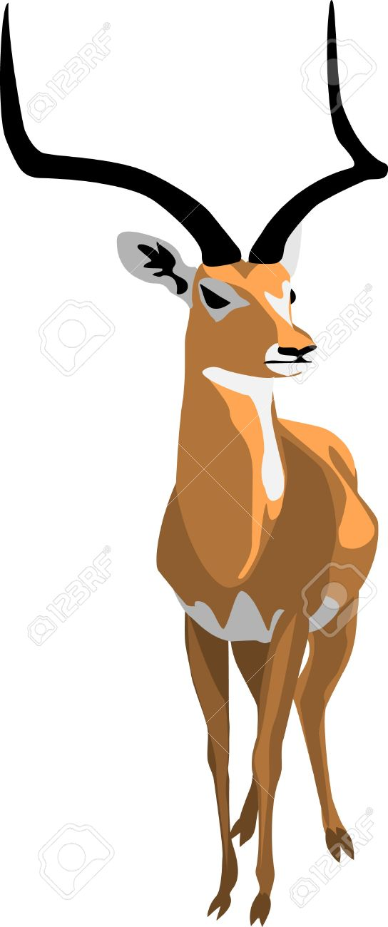 Grant Gazelle Royalty Free Cliparts, Vectors, And Stock.