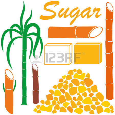 94 Granulated Sugar Stock Vector Illustration And Royalty Free.