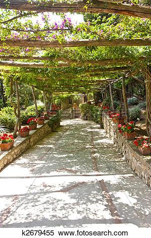 Stock Image of Walkway Under Grape Arbor k2679455.