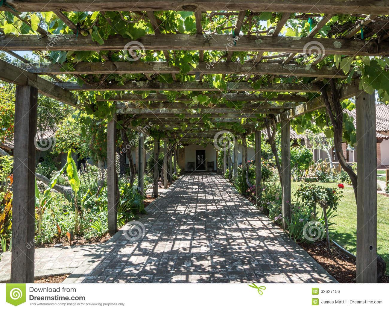 Grape Arbor Stock Images.