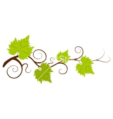 grape branch clipart clipground grape vine clipart free grape vine clipart border