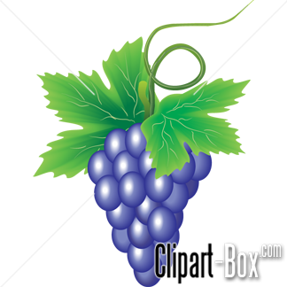 CLIPART GRAPES BRANCH.