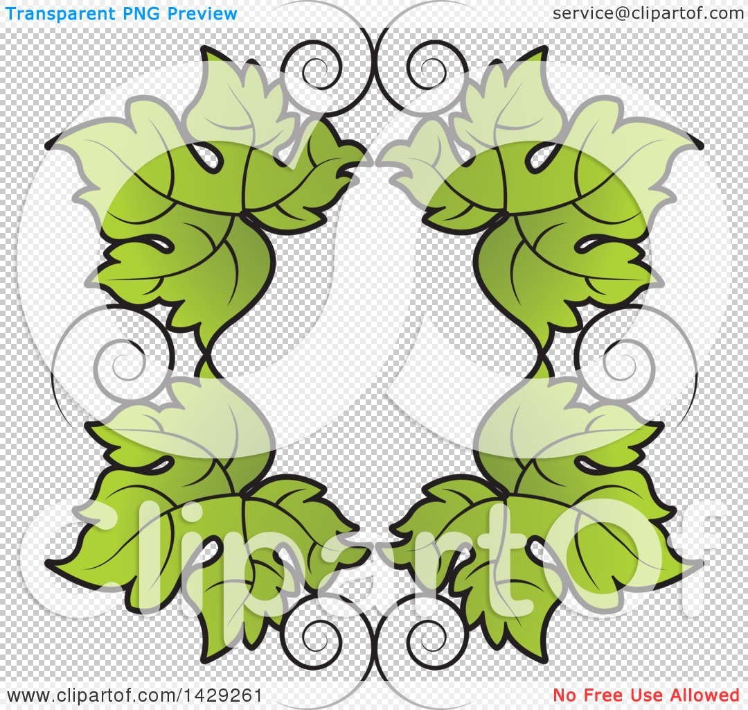 Clipart of a Border of Grape Leaves.