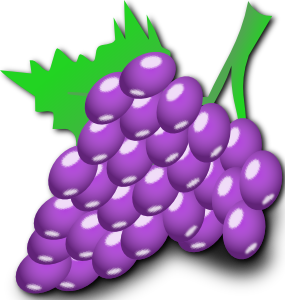 Grape clipart vector.