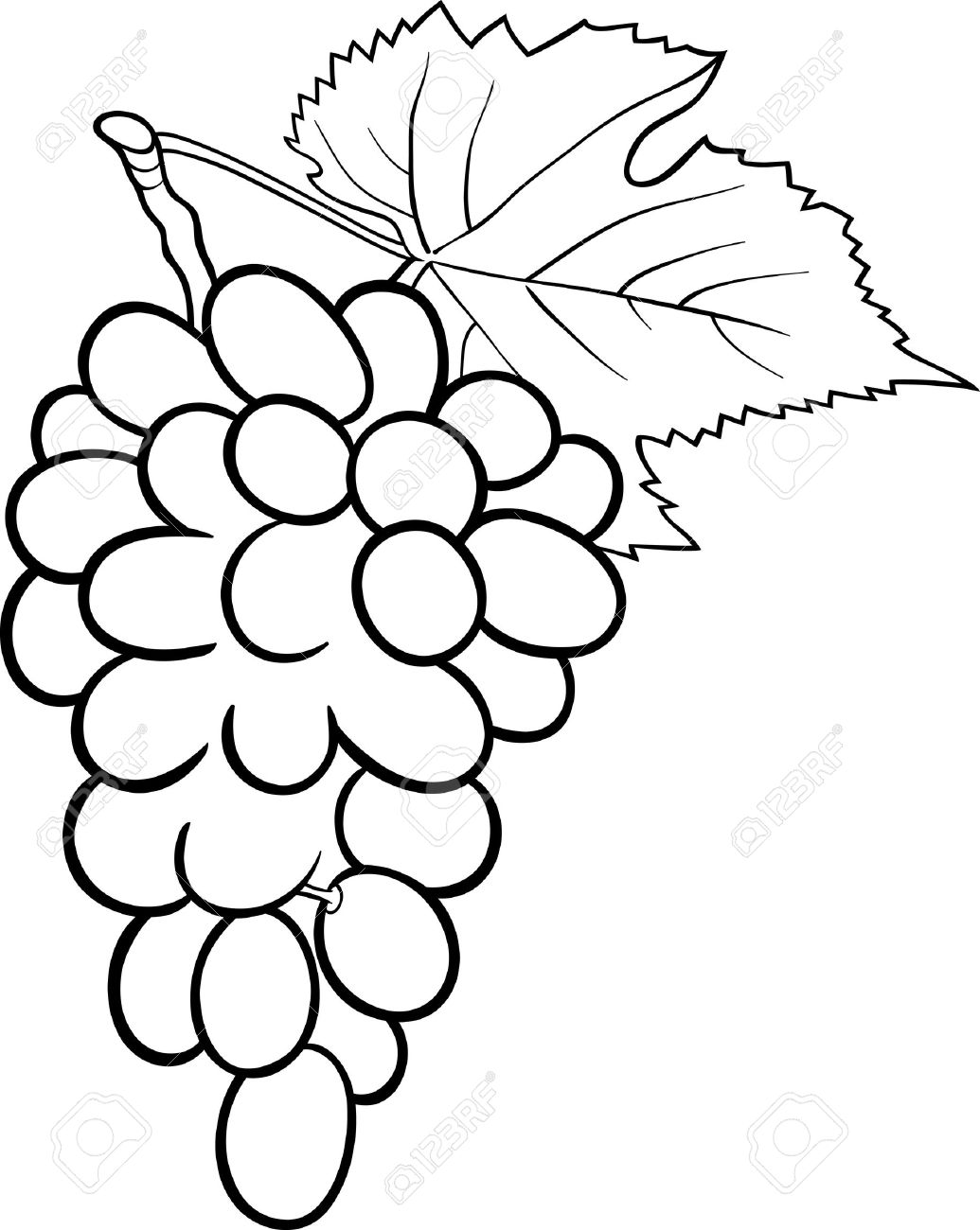 Black and White Cartoon Illustration of Bunch of Grapes or Grapevine...