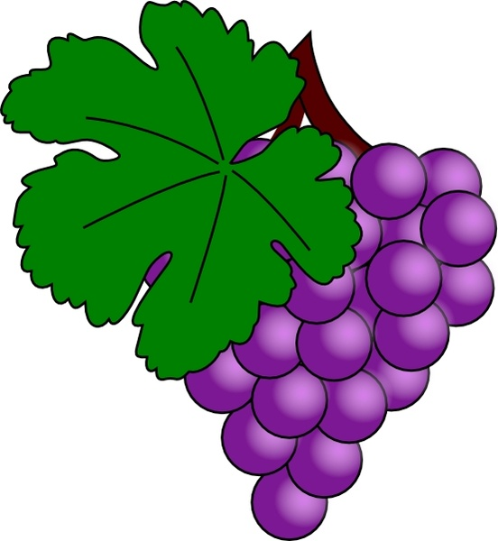 Grape With Vine Leaf clip art Free vector in Open office drawing.