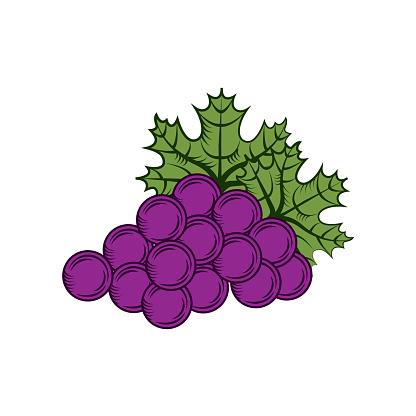 Crop Growing Clip Art, Vector Images & Illustrations.