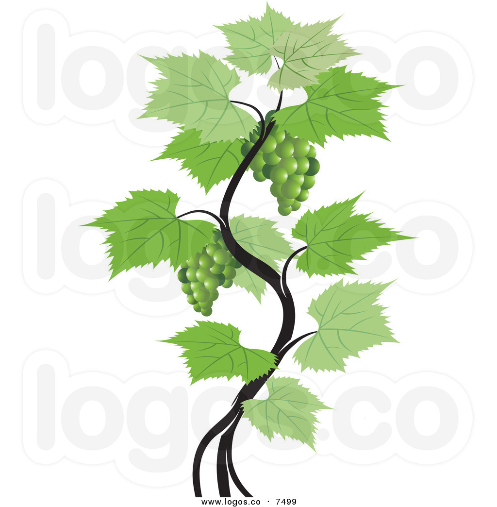 Grape clipart logo.