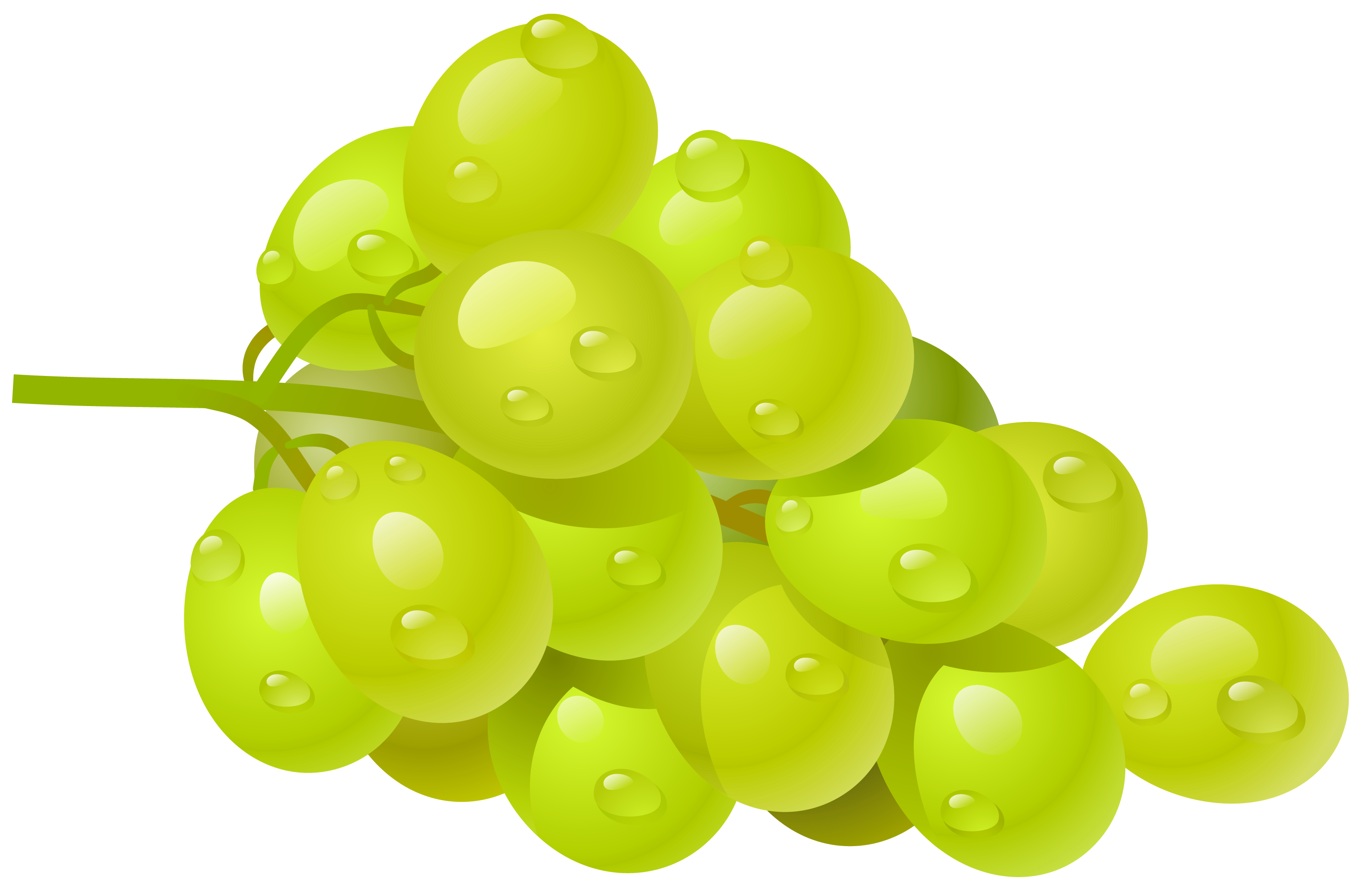 Grapes fruit clipart.