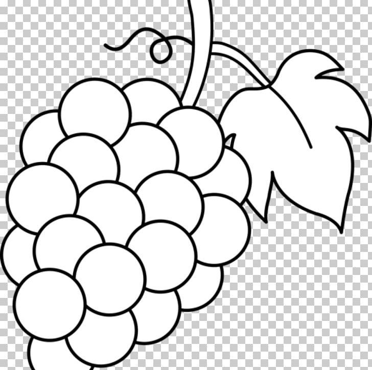 Common Grape Vine Coloring Book Grape Leaves Fruit PNG.
