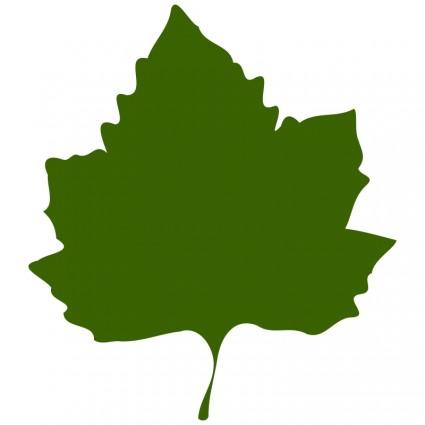 Free Grape Leaf Cliparts, Download Free Clip Art, Free Clip.