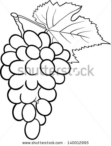 Black Silhouette Grapes Vector Illustration Stock Vector 128055170.