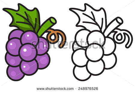 Grapes Vector Stock Images, Royalty.