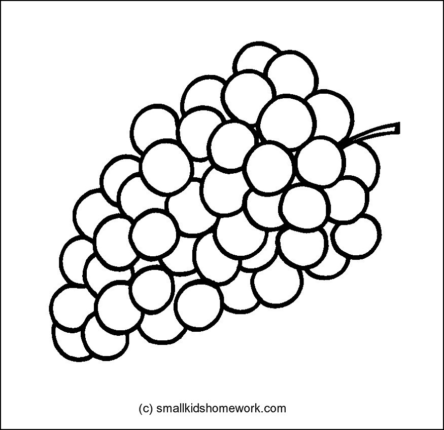 Fruits Outline Pictures and coloring pages for little kids.