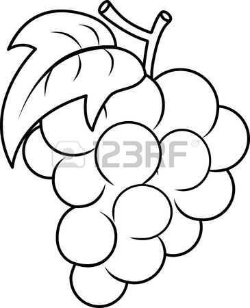 6,333 Black Grape Stock Vector Illustration And Royalty Free Black.