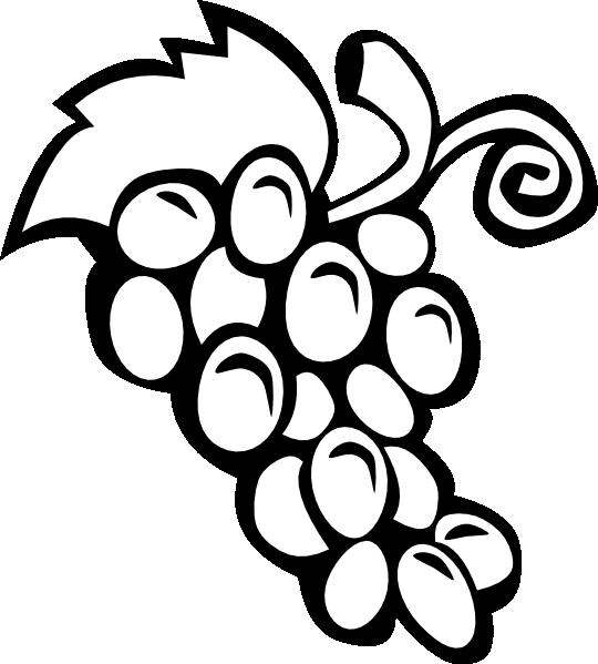 Grape Vine clip art Free Vector / 4Vector.