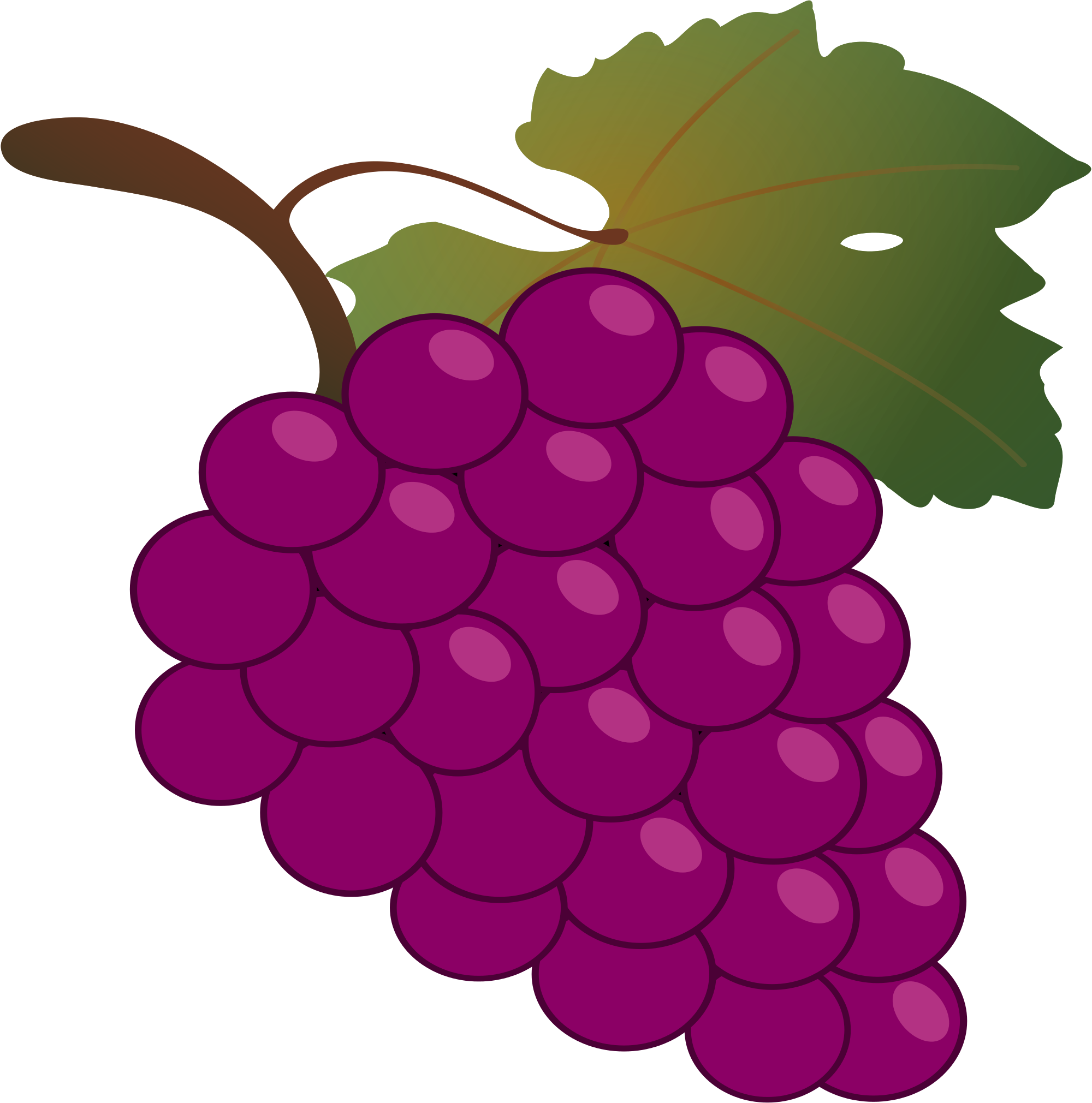 Grapes clipart vector, Grapes vector Transparent FREE for.
