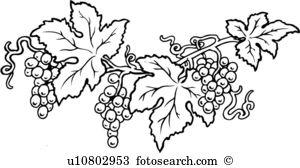 Grape vine Clipart Illustrations. 5,711 grape vine clip art vector.