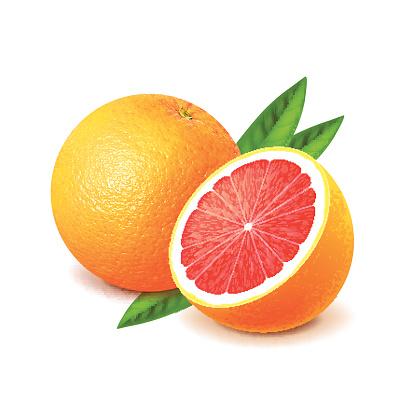 Grapefruit Clip Art, Vector Images & Illustrations.