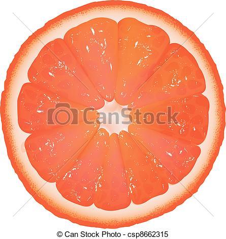 Grapefruit Clipart and Stock Illustrations. 2,402 Grapefruit.