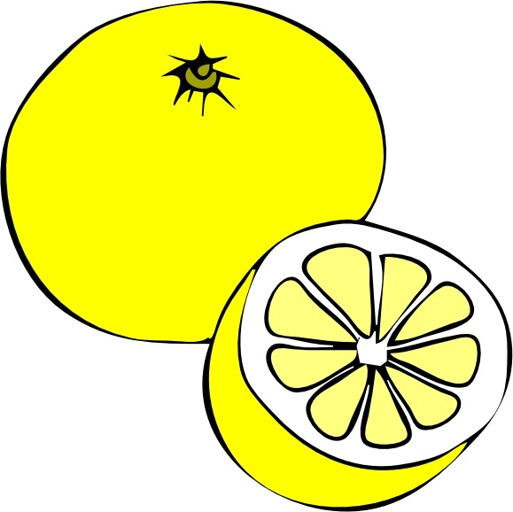 Grapefruit clip art Free vector in Open office drawing svg ( .svg.