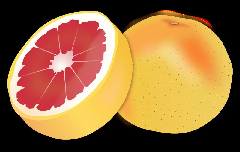 Free Clipart: Grapefruit.