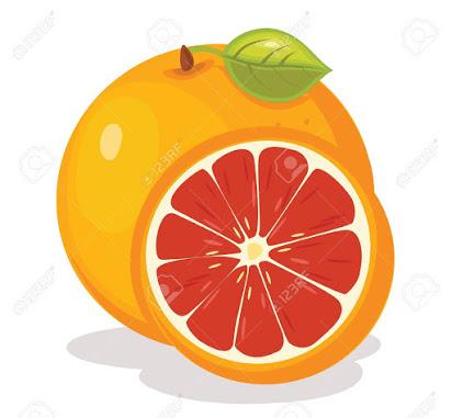 free clipart grapefruit.