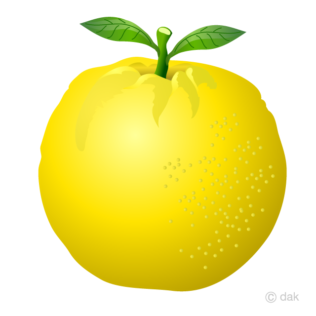 Free Grapefruit Clipart Image|Illustoon.