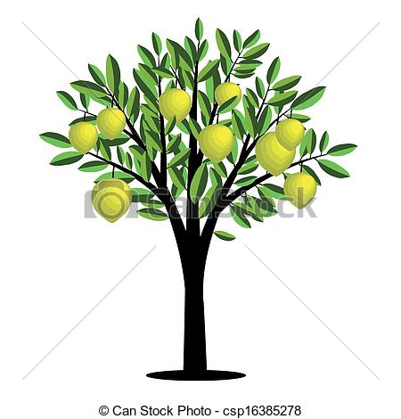 Lemon tree Illustrations and Clipart. 967 Lemon tree royalty free.