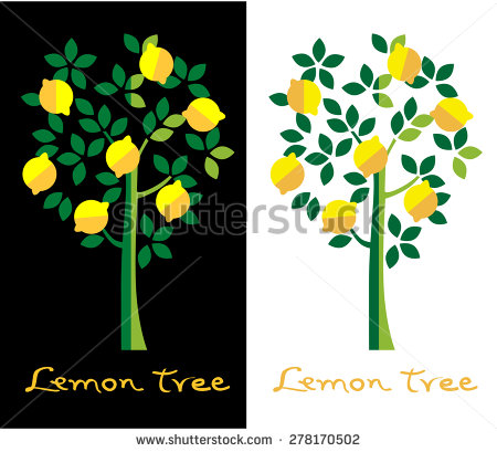 Lemon Tree Stock Photos, Royalty.