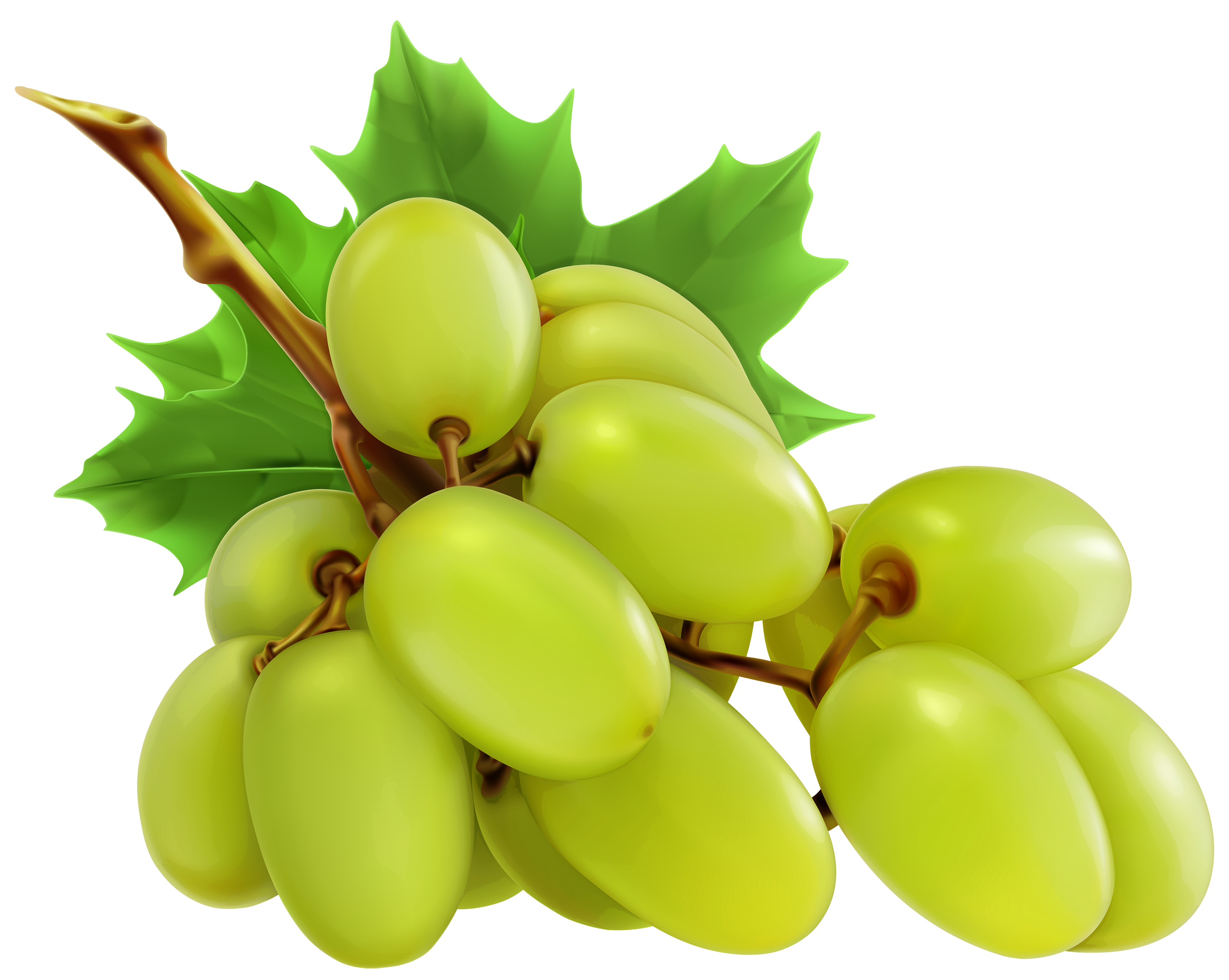 Grapes clipart free clip art image 2.