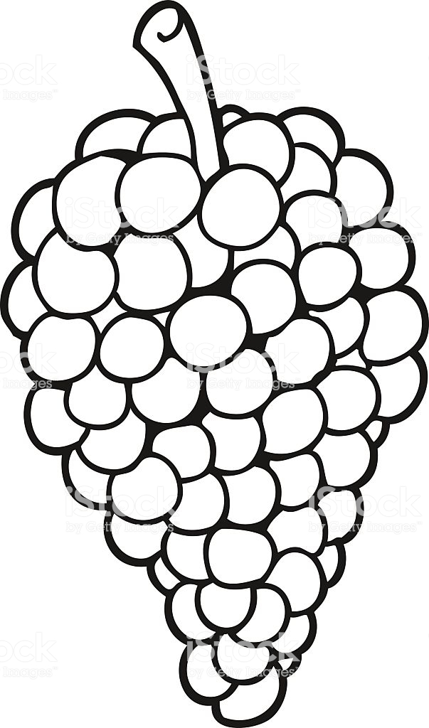 Black And White Cartoon Grapes Stock Illustration.