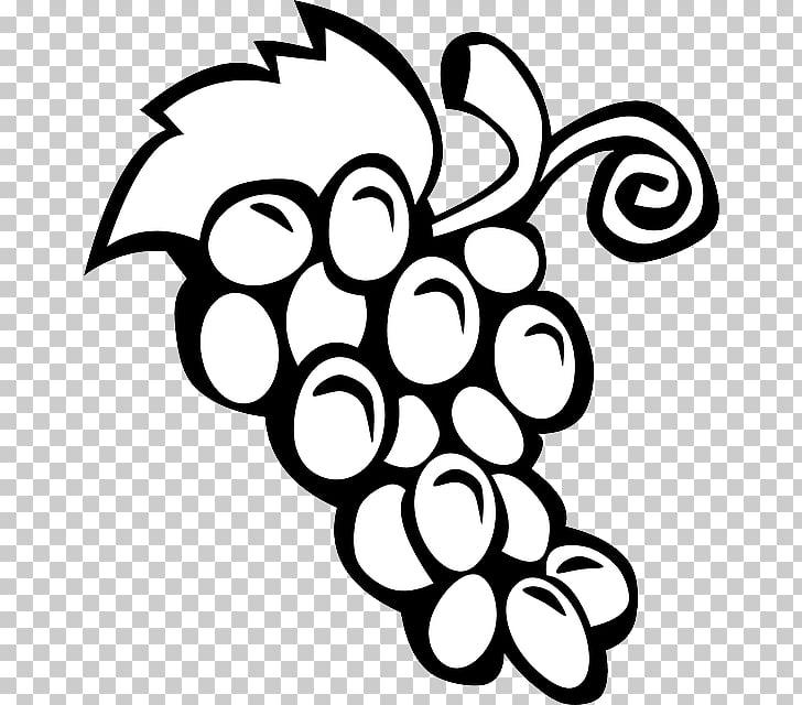 Wine Common Grape Vine , Grape Outline PNG clipart.