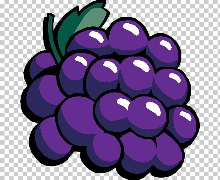 Common Grape Vine Wine PNG, Clipart, Cartoon, Cartoon Grapes.