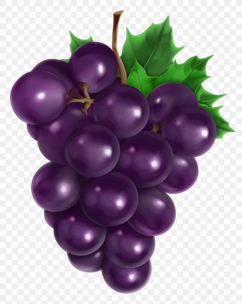 Juice Common Grape Vine Fruit, PNG, 3596x4520px, Juice.