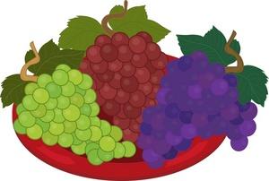 Grapes fruit clipart.