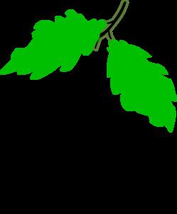 Free Clip Art Grape Leaves.