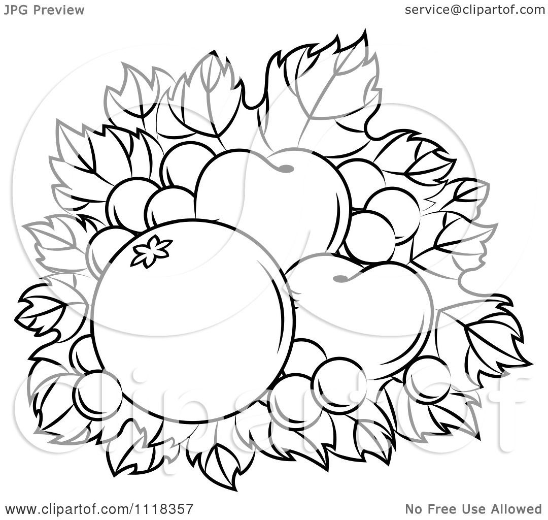 Clipart Of Black And White Harvest Fruit On Grapes.