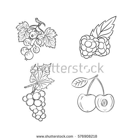 Grape Outline Stock Images, Royalty.