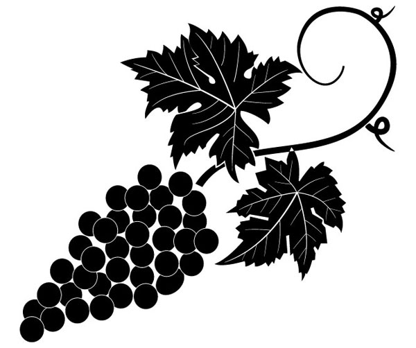 Grapevine Vector Image Free Vector.