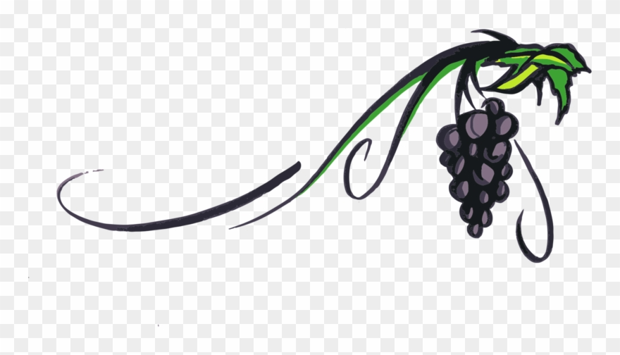 Grapevine Png Transparent Picture.